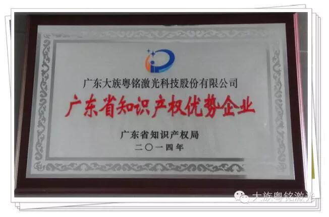 Nowadays, according to the work promotion arrangements of provincial top brand product,   GD Han's Yueming Laser Group Co., Ltd(The fellow is called Han's Yueming Group)through the city audit checks, public declaration data,
