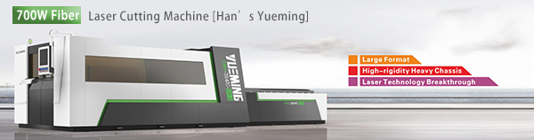 700W fiber laser cutting machine.jpg